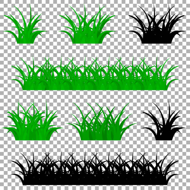 stockillustraties, clipart, cartoons en iconen met gras vector pictogram - grasspriet