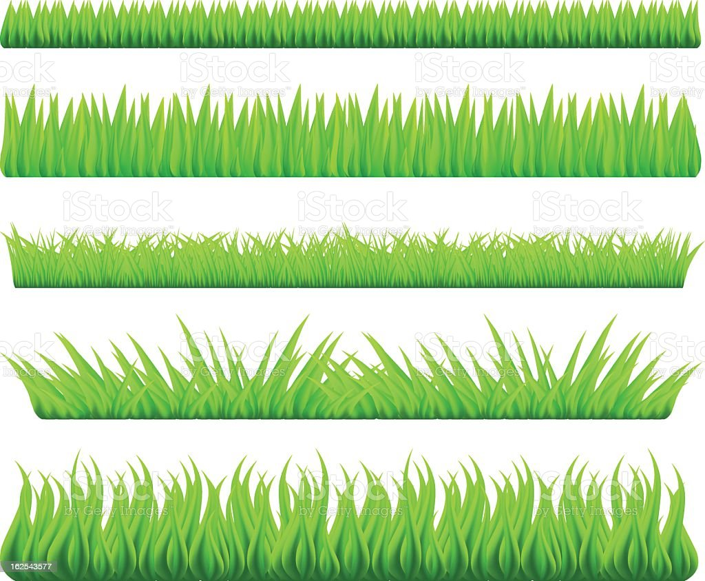 Grass Stock Vector Art Amp More Images Of Backgrounds