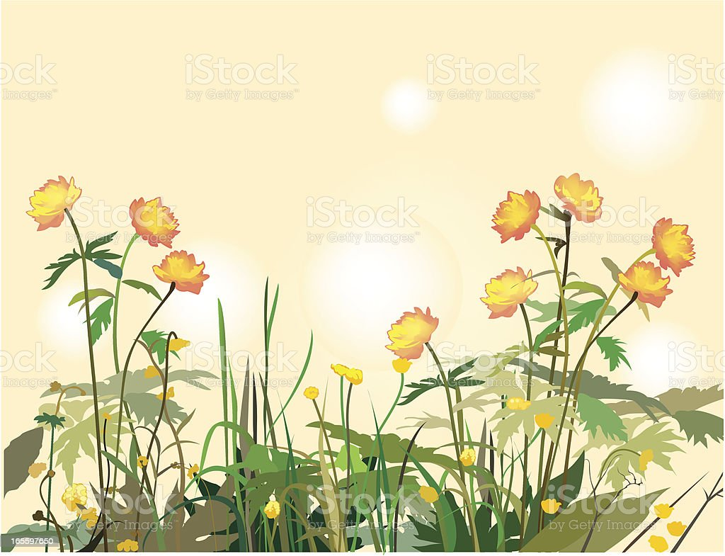 Grass royalty-free grass stock vector art & more images of backgrounds