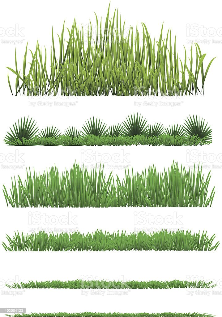 Grass vector art illustration