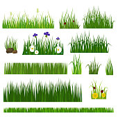 Green grass nature design elements vector illustration isolated on white background