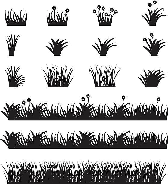 stockillustraties, clipart, cartoons en iconen met grass vector set. - wieden