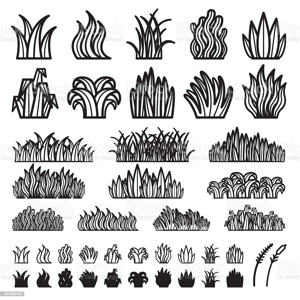 Grass Vector vector art illustration