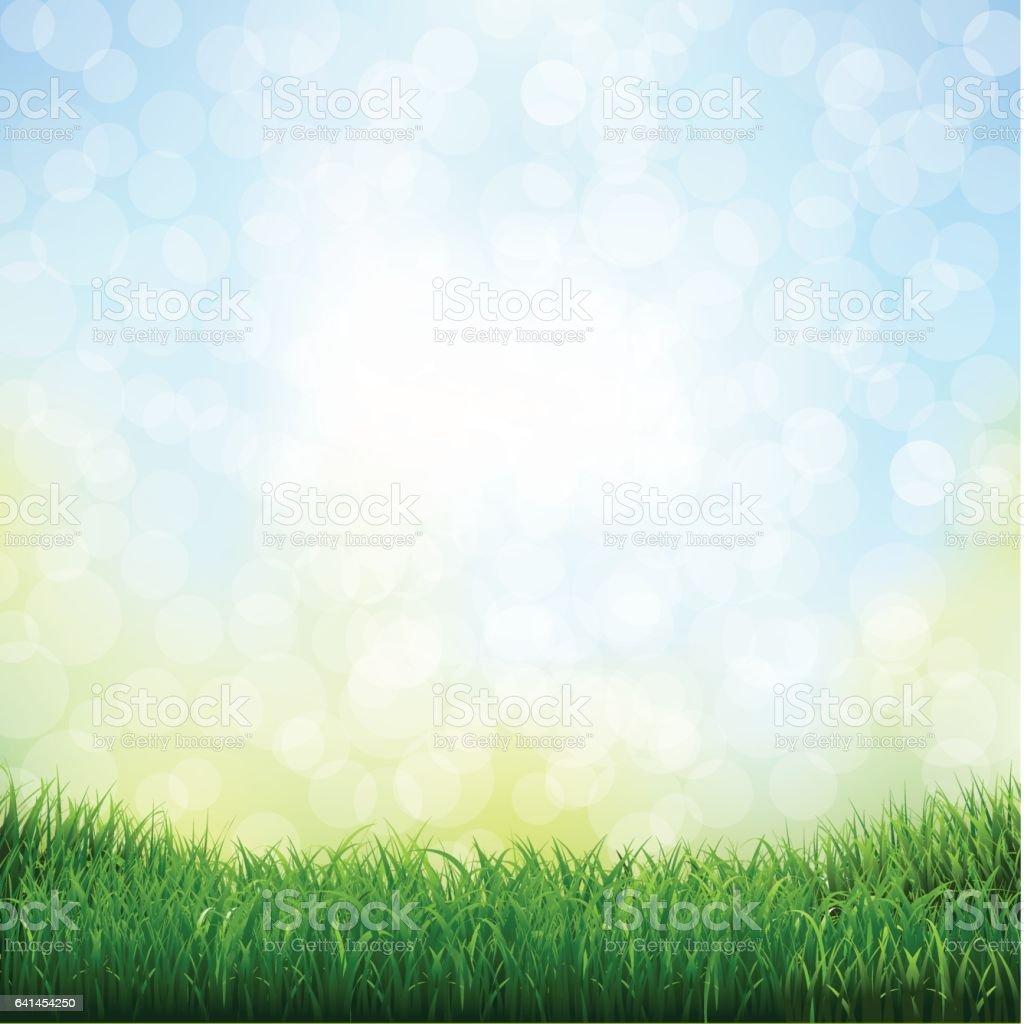 Grass With Bokeh vector art illustration
