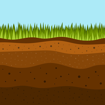 grass with underground layers of earth, vector illustration