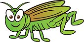 Grasshopper Cartoon Illustration