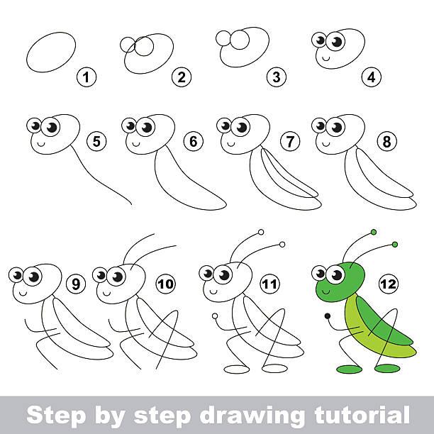 Grasshopper Basic Tutorial