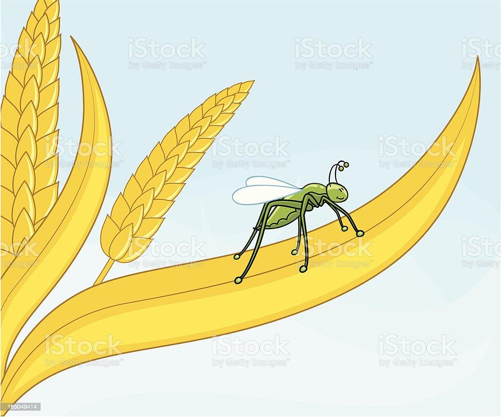 Grasshopper - incl. jpeg royalty-free stock vector art