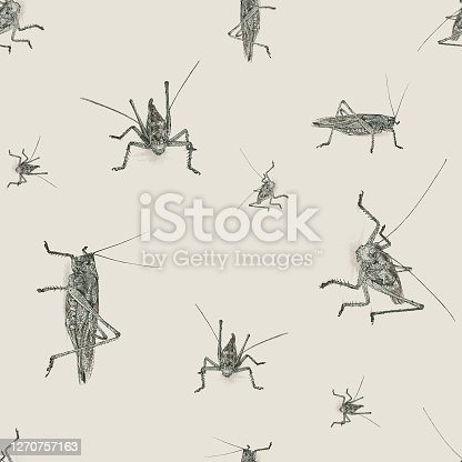 istock Grasshopper Seamless Repeat Pattern 1270757163