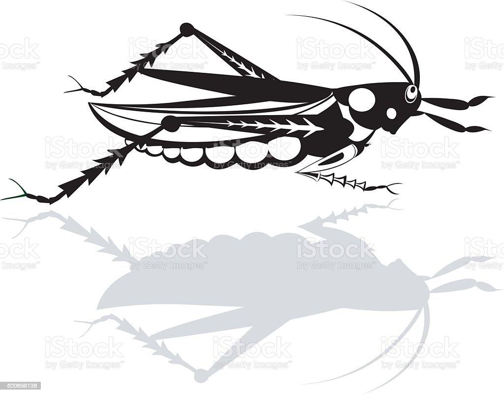Grasshopper, vector art illustration