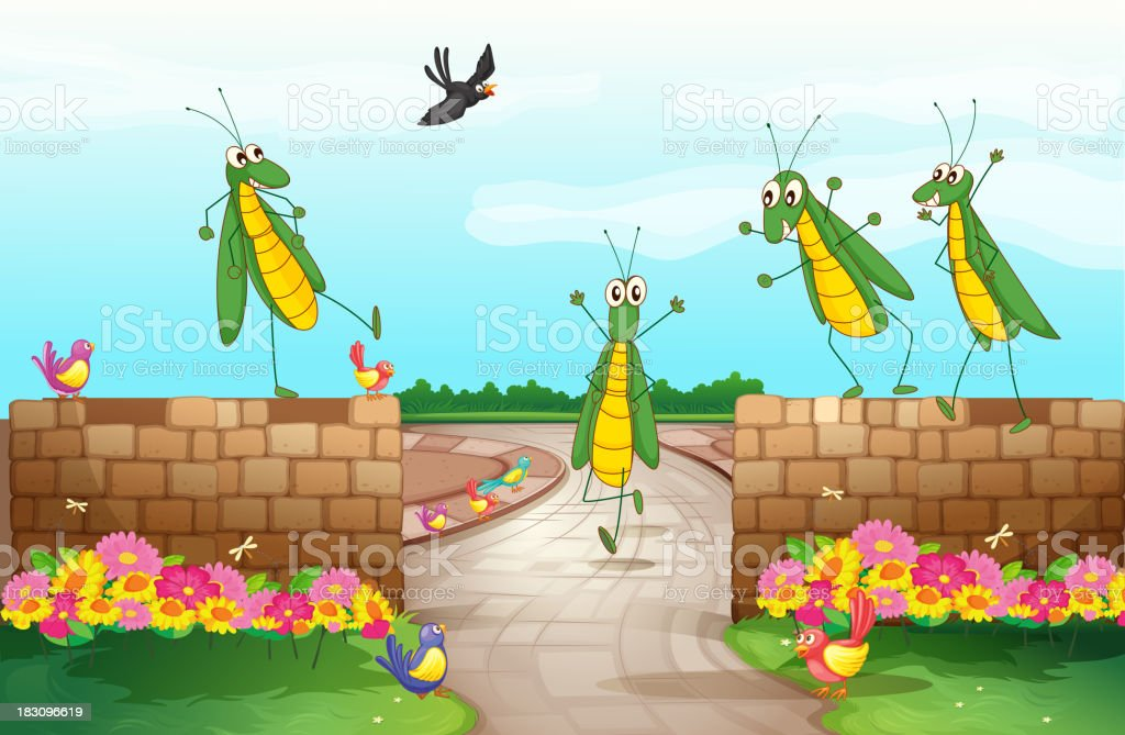 Grasshoppers near a wall royalty-free stock vector art