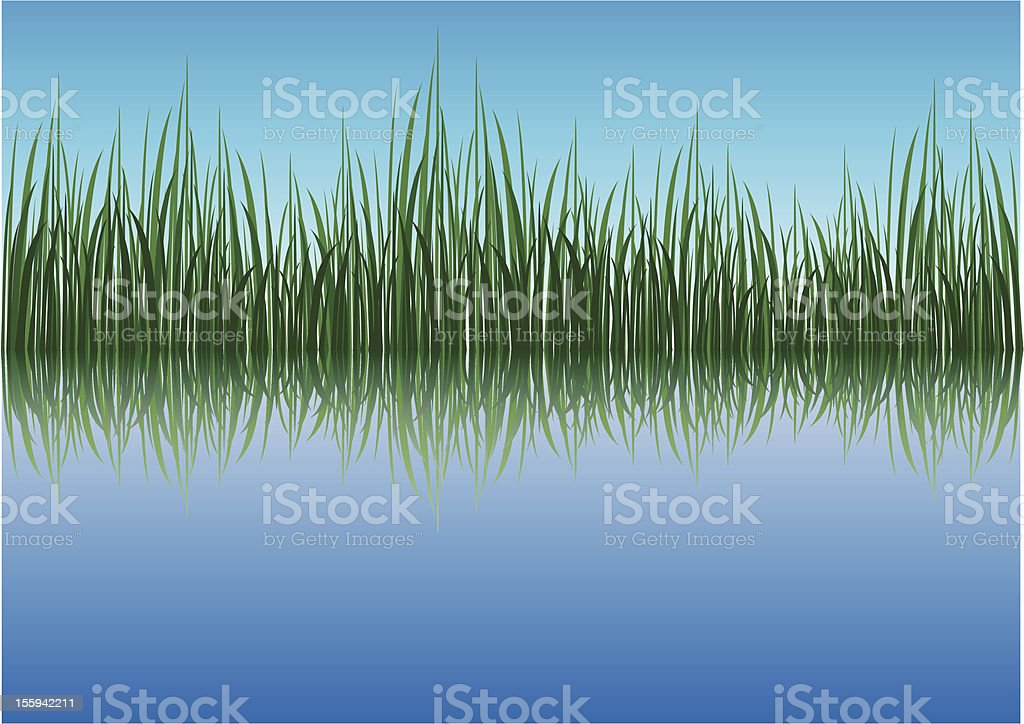 Grassy river vector art illustration