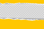 istock Gray background with copyspace and torn paper edge. Vector illustration. 1248733721