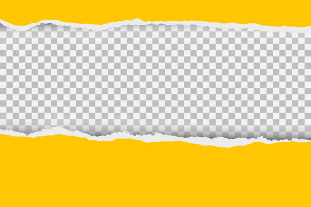 Gray background with copyspace and torn paper edge. Vector illustration. Gray background with copyspace and torn paper edge. Vector illustration paper stock illustrations