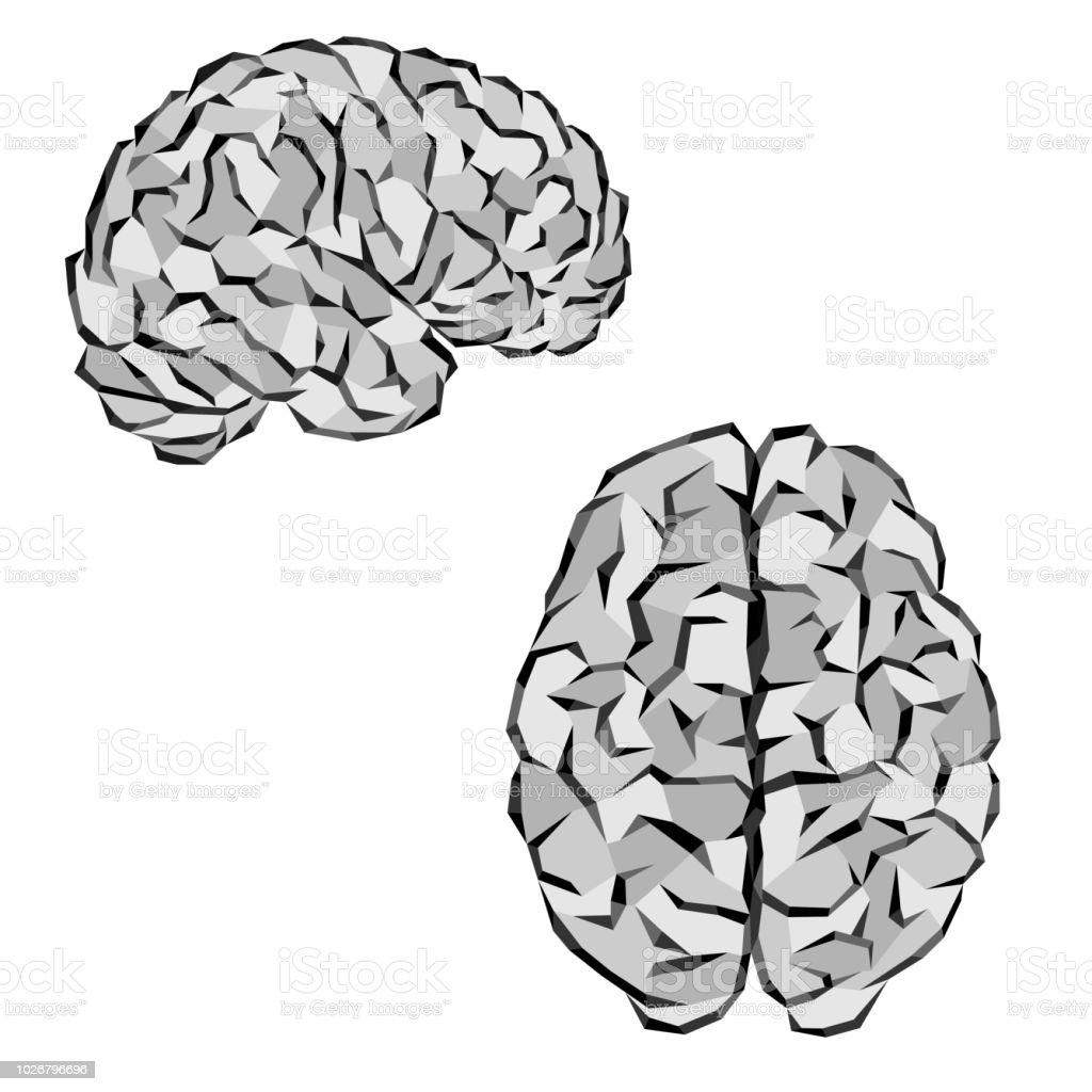 Gray brain silhouettes - illustrazione arte vettoriale