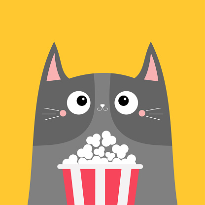 Gray cat popcorn box. Cute cartoon funny character. Kids print for tshirt notebook cover. Cinema theater. Film show. Kitten watching movie. Yellow background. Isolated. Flat design