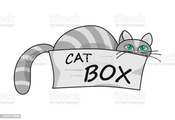 Gray cat with green eyes peeking out of a cardboard box vector id1053123850?b=1&k=6&m=1053123850&s=612x612&h=664kut b7d0oc91d318vzj9j9w11qi5vjuxy5mqfwau=
