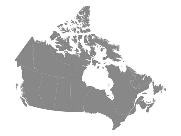 gray map of canada with provinces - kanada stock illustrations