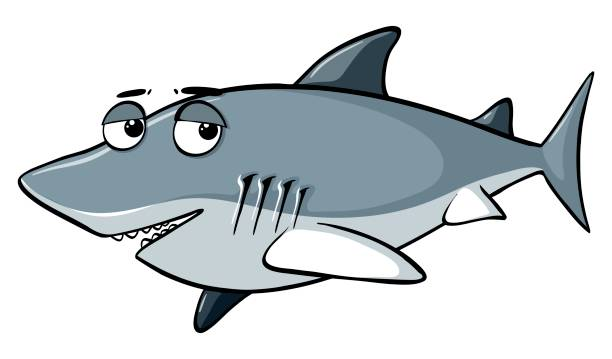 Royalty Free Baby Shark Clip Art, Vector Images ...