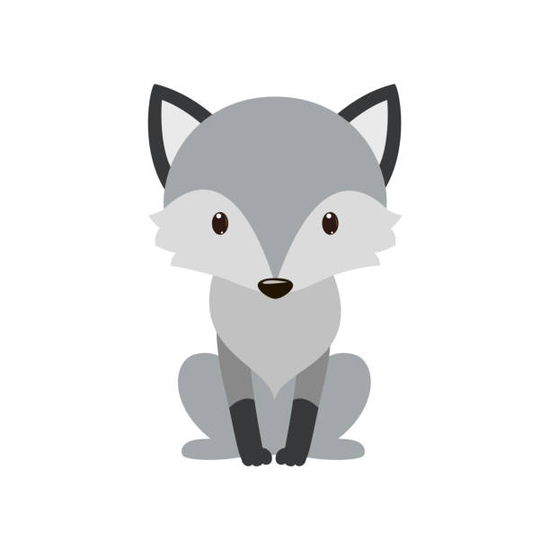 Gray wolf. Cartoon, wolf grey the nature of the character. Gray wolf. Cartoon, wolf grey the nature of the character. Vector illustration. cute wolf stock illustrations