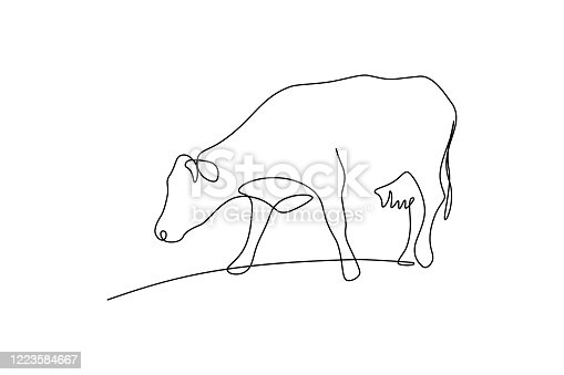 istock Grazing cow 1223584667