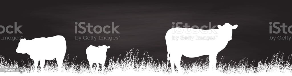Grazing Cows Chalkboard vector art illustration