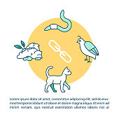 Grazing food chain concept icon with text. Herbivores and carnivores, producers and consumers. PPT page vector template. Brochure, magazine, booklet design element with linear illustrations
