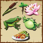 Great frog kingdom, vector set of objects related it