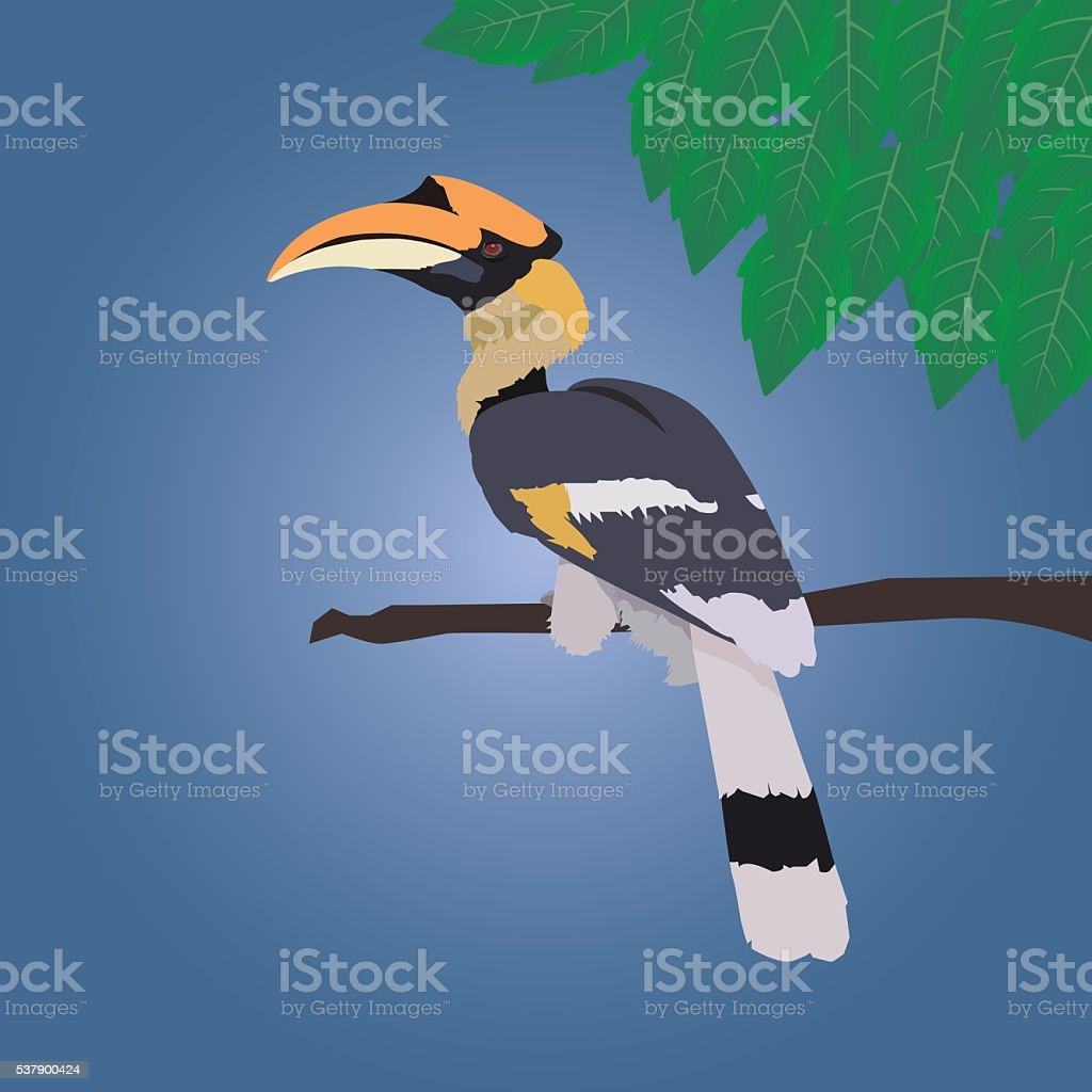 Great hornbill stand on the branch with leaf vector art illustration