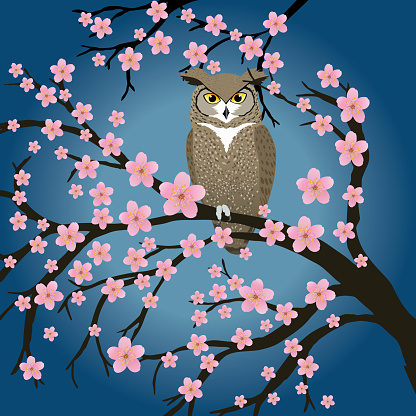 Great horned owl in a blossom tree