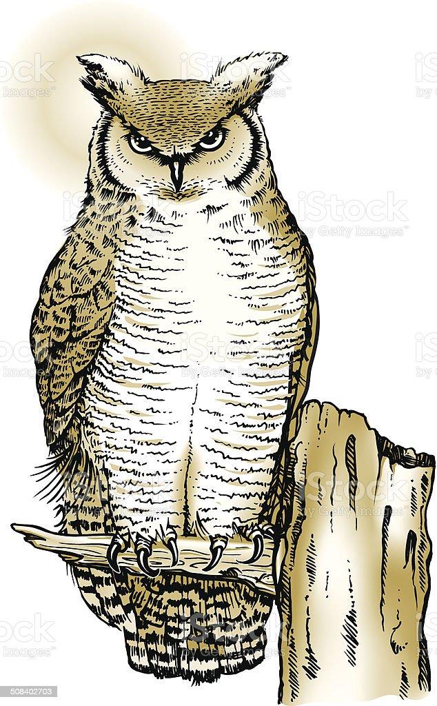 Great Horned Owl vector art illustration