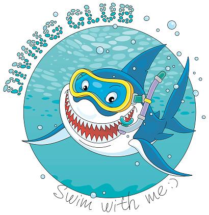Great white shark diver