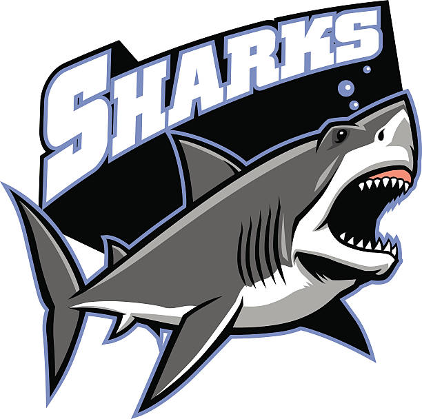 great white shark mascot vector of great white shark mascot great white shark stock illustrations