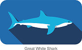 Great white shark swimming  flat 3D icon design