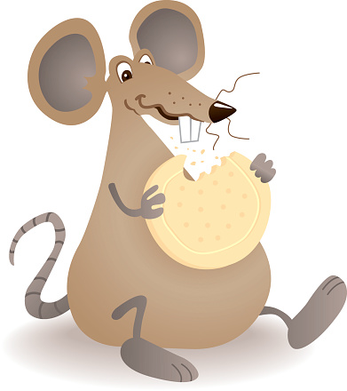 Greedy Biscuit Mouse