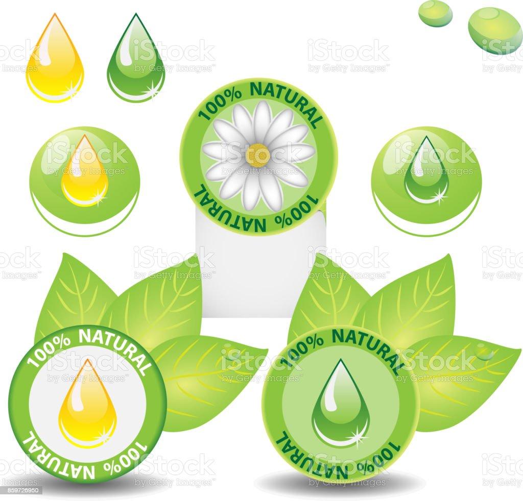Verde 100 Natural Ecológico La Etiqueta O Conjunto De Plantillas De ...