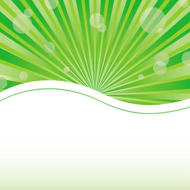 Green abstract card template with sun baubles vector art illustration