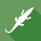 Vector illustration of a green and white aligator icon.