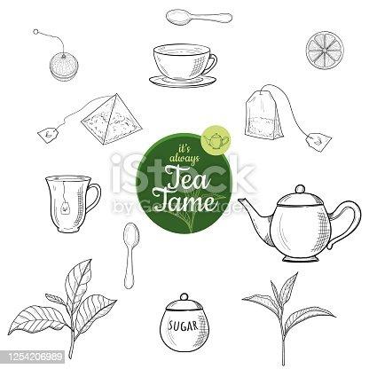 Green and black tea hand drawn ink sketch outline vector set isolated. Kettle, leaves, mag, sugar bowl, spoon, tea bag, lemon slice, strainer. Illustration for cafe, restaurant menu, web and print.