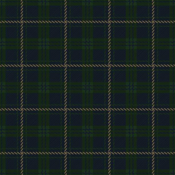 stockillustraties, clipart, cartoons en iconen met groen en marine blauwe check flannel plaid naadloze patroon - schooluniform