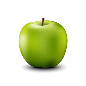 Green apple realistic detailed 3d illustration isolated on white. Vector.