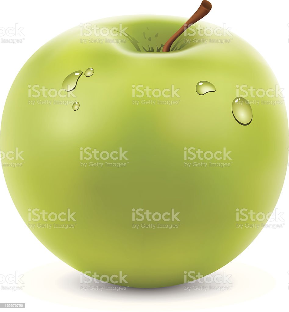 Green Apple royalty-free stock vector art