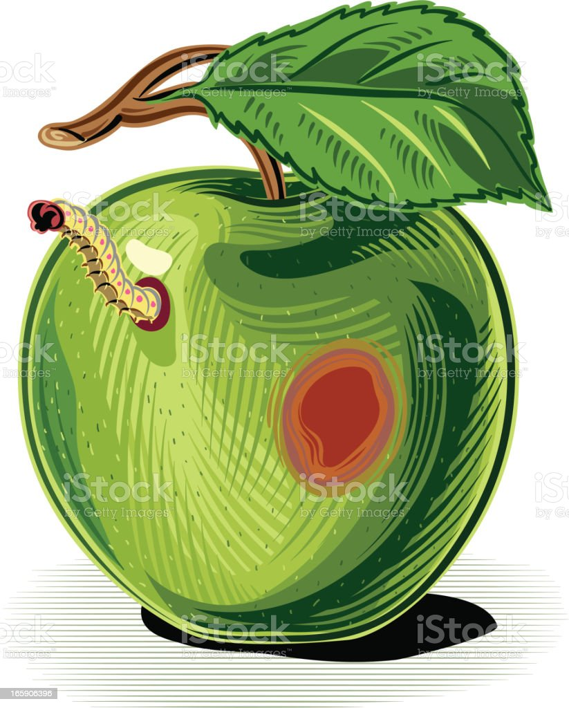 Green apple with worm vector art illustration