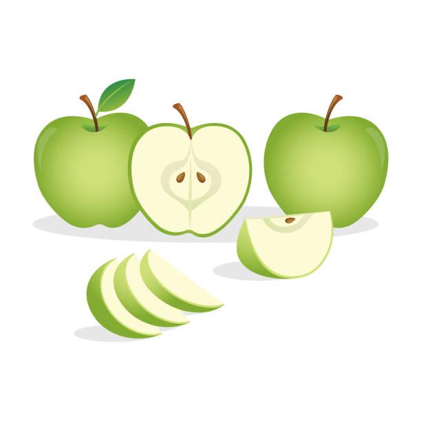 ilustrações, clipart, desenhos animados e ícones de maçã verde - fruit salad