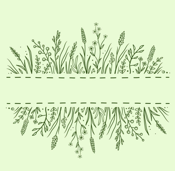 green background with herbs and flowers green hand drawn background with wild drug herbs, flowers and plants crop plant stock illustrations
