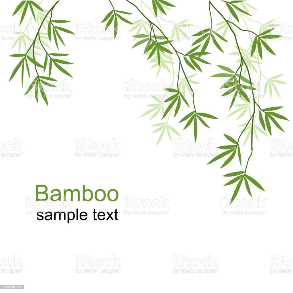 Green bamboo branches vector art illustration