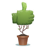 Vector image of a green bonsai tree in the form of a thumb up in a brown pot on a white background. Business, icon, finance, office, nature, gardening. Vector illustration.