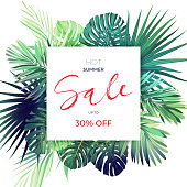Green botanical summer tropical sale flyer with palm leaves and exotic plants. Floral banner template. Vector illustration.