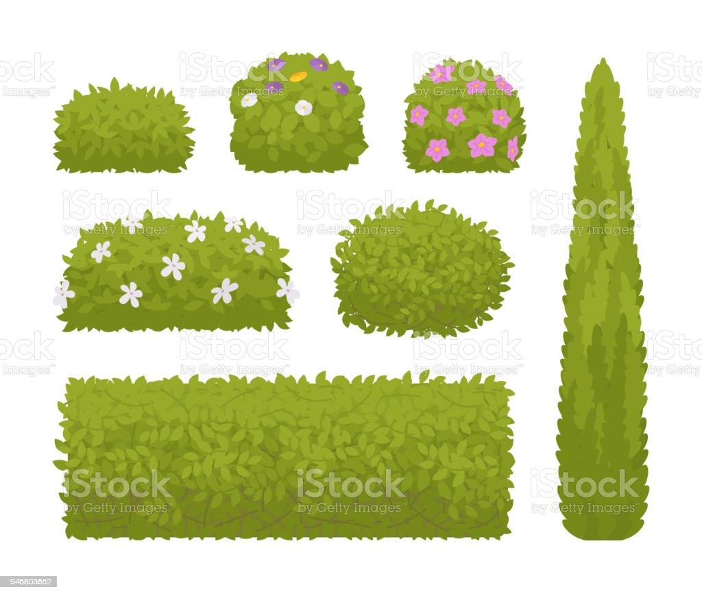 Jeu de buissons verts - Illustration vectorielle