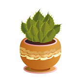 Green cactus with thorns in a decorative orange pot. Exotic home plant concept. Isolated vector icon illustration on white background in cartoon style.